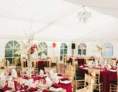 wedding marquee hire with gold tiffany chairs