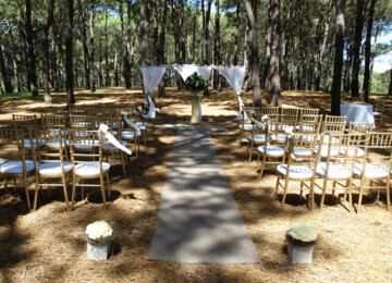 Gold Tiffany Chairs Wedding Ceremony By Event Marquees