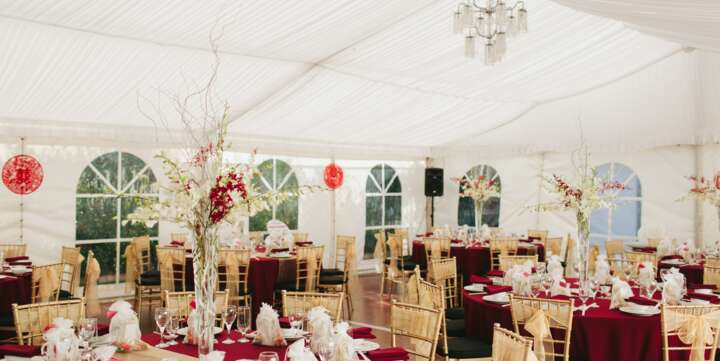 wedding marquee hire and gold tiffany chairs